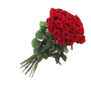 Bunch of 21 red roses